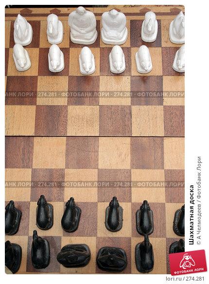 Шахматная доска, фото № 274281, снято 16 июня 2007 г. (c) A Челмодеев / Фотобанк Лори