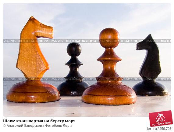 Купить «Шахматная партия на берегу моря», фото № 256705, снято 23 сентября 2006 г. (c) Анатолий Заводсков / Фотобанк Лори