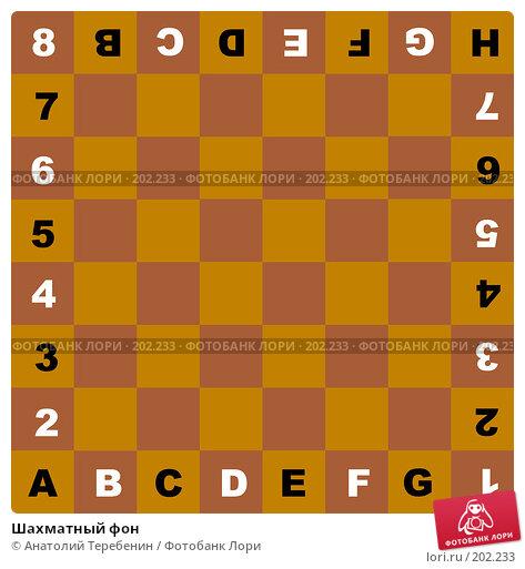 Шахматный фон, иллюстрация № 202233 (c) Анатолий Теребенин / Фотобанк Лори