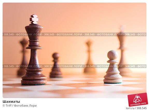 Шахматы, фото № 308545, снято 9 февраля 2008 г. (c) Triff / Фотобанк Лори