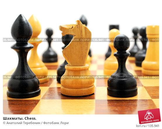 Шахматы. Chess., фото № 135941, снято 30 ноября 2007 г. (c) Анатолий Теребенин / Фотобанк Лори