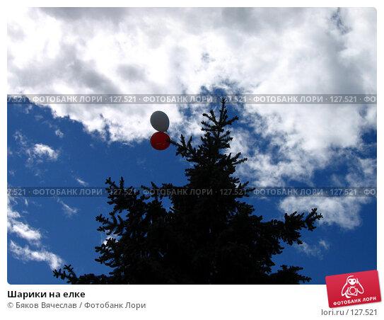 Купить «Шарики на елке», фото № 127521, снято 12 июня 2007 г. (c) Бяков Вячеслав / Фотобанк Лори