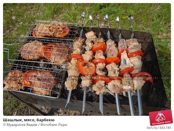 Шашлык, мясо, барбекю, фото № 333141, снято 15 июня 2008 г. (c) Мударисов Вадим / Фотобанк Лори