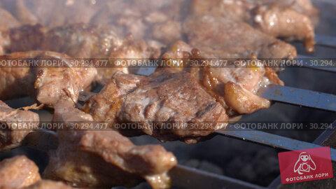 Купить «Шашлыки», видеоролик № 30294477, снято 12 марта 2019 г. (c) А. А. Пирагис / Фотобанк Лори