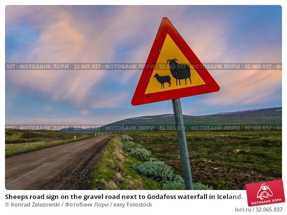 Sheeps road sign on the gravel road next to Godafoss waterfall in Iceland. Стоковое фото, фотограф Konrad Zelazowski / easy Fotostock / Фотобанк Лори