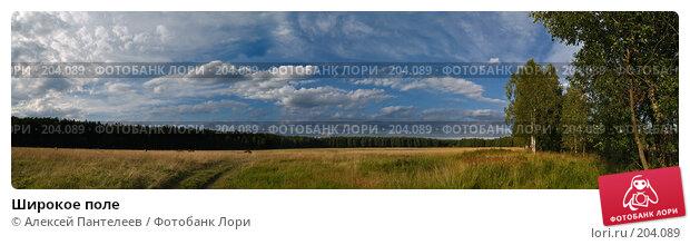 Широкое поле, фото № 204089, снято 23 июля 2007 г. (c) Алексей Пантелеев / Фотобанк Лори