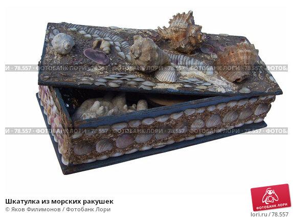 Шкатулка из морских ракушек, фото № 78557, снято 2 сентября 2007 г. (c) Яков Филимонов / Фотобанк Лори