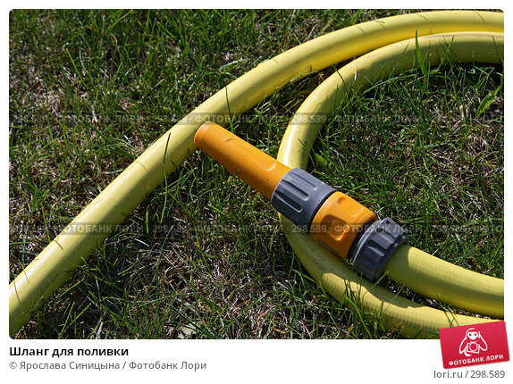 Шланг для поливки, фото № 298589, снято 3 мая 2008 г. (c) Ярослава Синицына / Фотобанк Лори