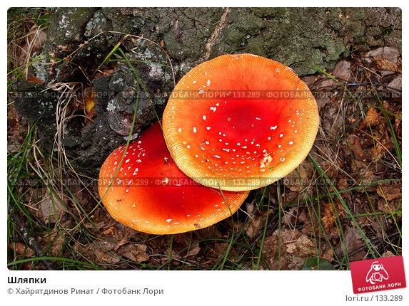 Шляпки, фото № 133289, снято 23 июля 2007 г. (c) Хайрятдинов Ринат / Фотобанк Лори