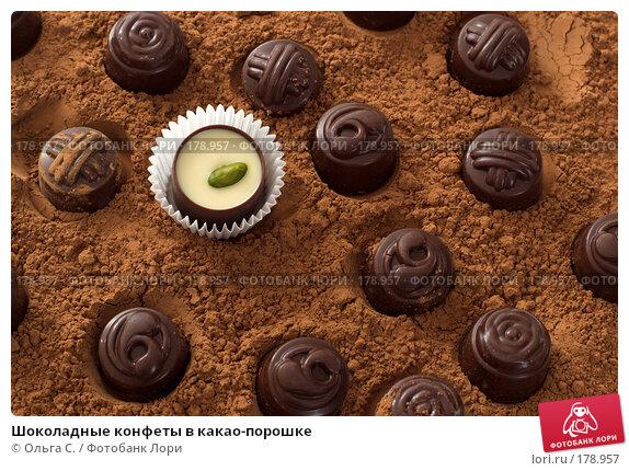 Шоколадные конфеты в какао-порошке, фото № 178957, снято 19 апреля 2007 г. (c) Ольга С. / Фотобанк Лори
