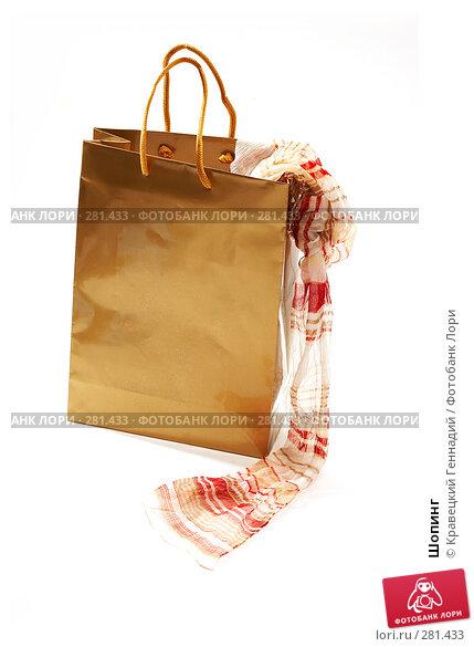 Купить «Шопинг», фото № 281433, снято 13 ноября 2005 г. (c) Кравецкий Геннадий / Фотобанк Лори