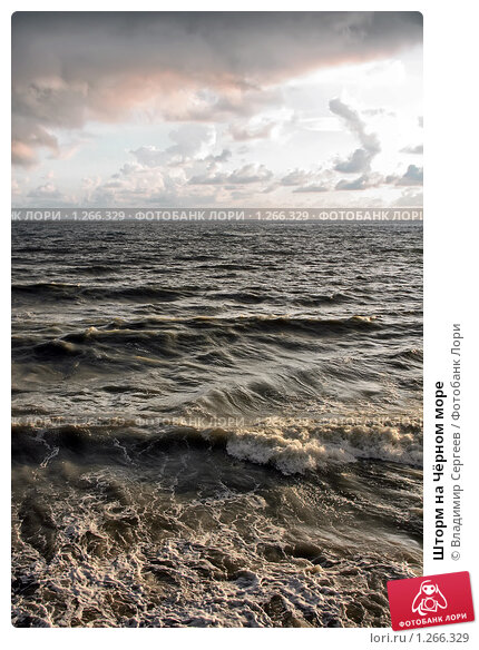 Купить «Шторм на Чёрном море», фото № 1266329, снято 14 сентября 2009 г. (c) Владимир Сергеев / Фотобанк Лори