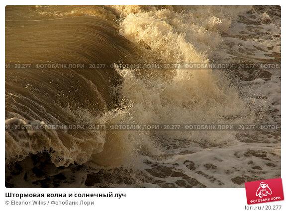 Штормовая волна и солнечный луч, фото № 20277, снято 6 марта 2007 г. (c) Eleanor Wilks / Фотобанк Лори