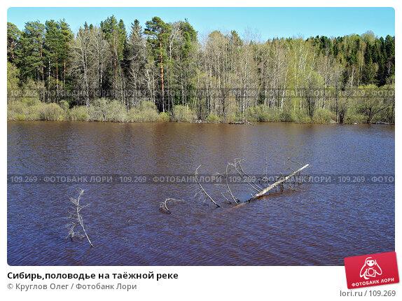 Сибирь,половодье на таёжной реке, фото № 109269, снято 27 мая 2007 г. (c) Круглов Олег / Фотобанк Лори