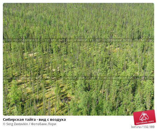 Купить «Сибирская тайга - вид с воздуха», фото № 132189, снято 5 июля 2004 г. (c) Serg Zastavkin / Фотобанк Лори