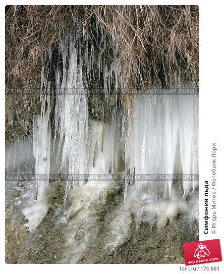 Купить «Симфония льда», фото № 176681, снято 10 января 2008 г. (c) Игорь Митов / Фотобанк Лори