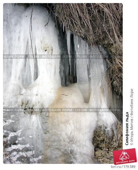 Симфония льда, фото № 179589, снято 10 января 2008 г. (c) Игорь Митов / Фотобанк Лори