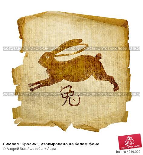 """Купить «Символ """"Кролик"""", изолировано на белом фоне», иллюстрация № 219029 (c) Андрей Зык / Фотобанк Лори"""