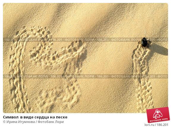 Купить «Символ  в виде сердца на песке», фото № 186201, снято 14 июня 2006 г. (c) Ирина Игумнова / Фотобанк Лори