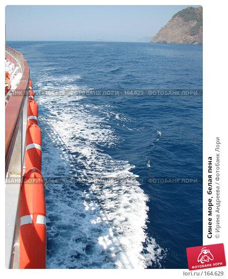 Синее море, белая пена, фото № 164629, снято 31 июля 2006 г. (c) Ирина Андреева / Фотобанк Лори