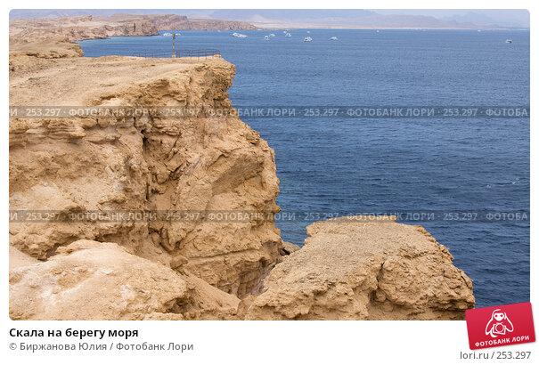 Купить «Скала на берегу моря», фото № 253297, снято 2 января 2008 г. (c) Биржанова Юлия / Фотобанк Лори