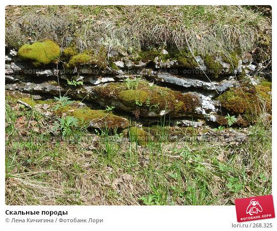 Скальные породы, фото № 268325, снято 22 мая 2007 г. (c) Лена Кичигина / Фотобанк Лори