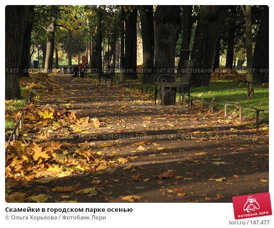Скамейки в городском парке осенью, фото № 147477, снято 11 октября 2007 г. (c) Ольга Хорькова / Фотобанк Лори