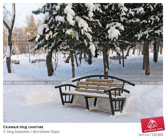Купить «Скамья под снегом», фото № 129865, снято 22 декабря 2004 г. (c) Serg Zastavkin / Фотобанк Лори