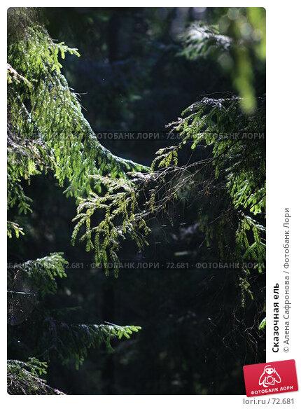 Сказочная ель, фото № 72681, снято 16 августа 2007 г. (c) Алена Сафронова / Фотобанк Лори