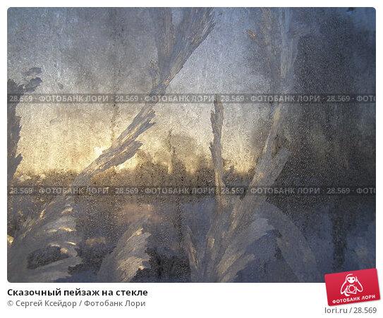 Сказочный пейзаж на стекле, фото № 28569, снято 24 января 2007 г. (c) Сергей Ксейдор / Фотобанк Лори