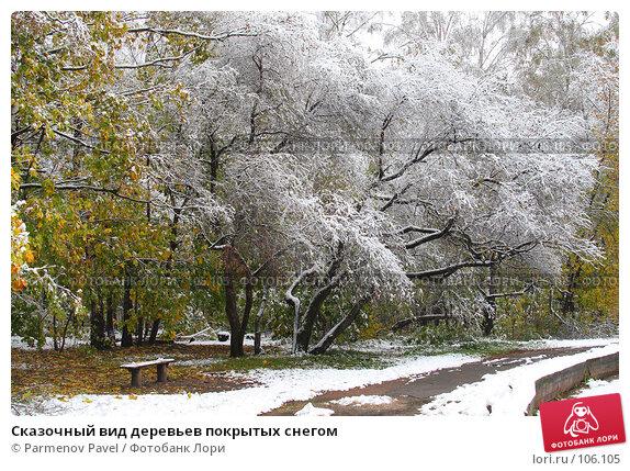 Сказочный вид деревьев покрытых снегом, фото № 106105, снято 16 октября 2007 г. (c) Parmenov Pavel / Фотобанк Лори