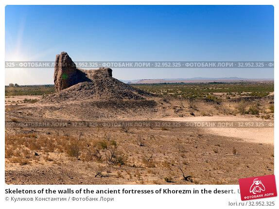 Skeletons of the walls of the ancient fortresses of Khorezm in the desert. Uzbekistan (2015 год). Стоковое фото, фотограф Куликов Константин / Фотобанк Лори