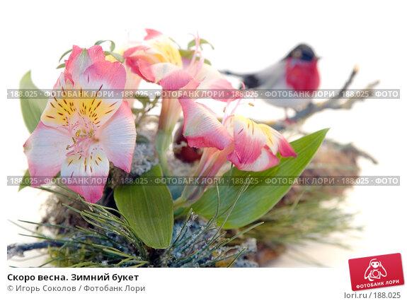 Скоро весна. Зимний букет, фото № 188025, снято 21 января 2008 г. (c) Игорь Соколов / Фотобанк Лори