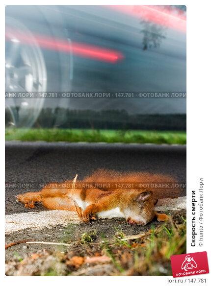 Скорость смерти, фото № 147781, снято 27 сентября 2004 г. (c) hunta / Фотобанк Лори