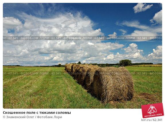 Скошенное поле с тюками соломы, фото № 62341, снято 15 июля 2007 г. (c) Знаменский Олег / Фотобанк Лори