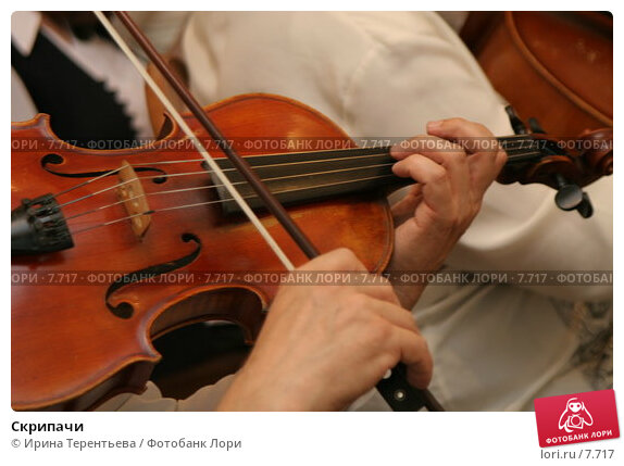 Скрипачи, эксклюзивное фото № 7717, снято 4 августа 2006 г. (c) Ирина Терентьева / Фотобанк Лори