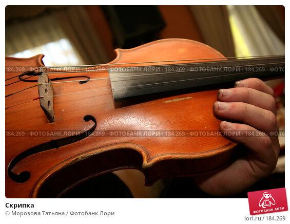 Скрипка, фото № 184269, снято 22 сентября 2007 г. (c) Морозова Татьяна / Фотобанк Лори