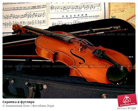 Скрипка в футляре, эксклюзивное фото № 47569, снято 7 ноября 2003 г. (c) Знаменский Олег / Фотобанк Лори