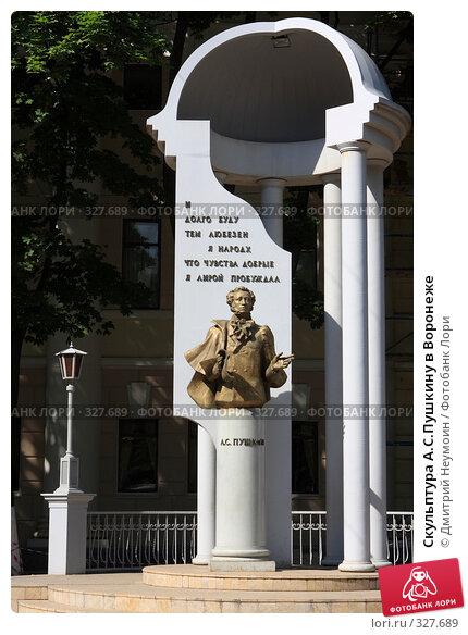 Скульптура А.С.Пушкину в Воронеже, эксклюзивное фото № 327689, снято 15 июня 2008 г. (c) Дмитрий Неумоин / Фотобанк Лори