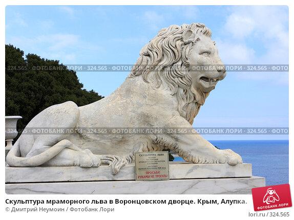 Скульптура мраморного льва в Воронцовском дворце. Крым, Алупка., эксклюзивное фото № 324565, снято 29 апреля 2008 г. (c) Дмитрий Неумоин / Фотобанк Лори