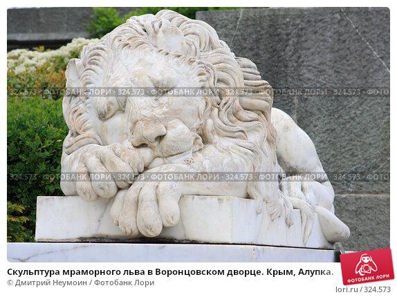 Скульптура мраморного льва в Воронцовском дворце. Крым, Алупка., эксклюзивное фото № 324573, снято 29 апреля 2008 г. (c) Дмитрий Неумоин / Фотобанк Лори