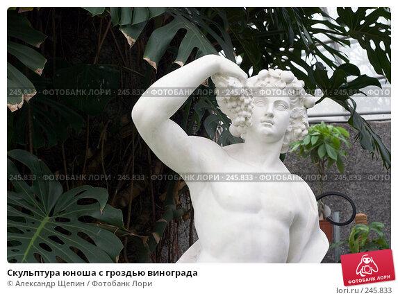 Скульптура юноша с гроздью винограда, эксклюзивное фото № 245833, снято 6 апреля 2008 г. (c) Александр Щепин / Фотобанк Лори