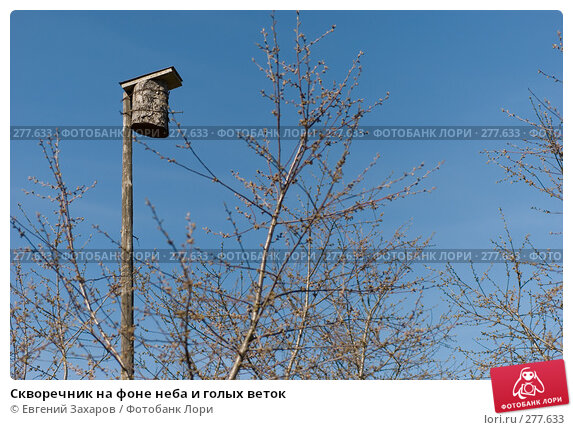 Скворечник на фоне неба и голых веток, фото № 277633, снято 25 апреля 2008 г. (c) Евгений Захаров / Фотобанк Лори