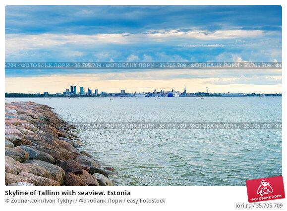 Skyline of Tallinn with seaview. Estonia. Стоковое фото, фотограф Zoonar.com/Ivan Tykhyi / easy Fotostock / Фотобанк Лори