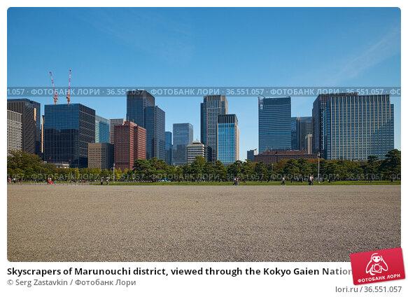 Skyscrapers of Marunouchi district, viewed through the Kokyo Gaien National Garden. Tokyo. Japan (2019 год). Стоковое фото, фотограф Serg Zastavkin / Фотобанк Лори