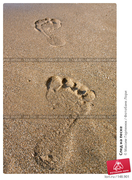 След на песке, фото № 148901, снято 9 октября 2007 г. (c) Максим Горпенюк / Фотобанк Лори