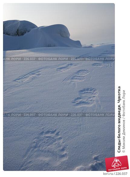 Следы белого медведя. Чукотка, фото № 226037, снято 17 марта 2008 г. (c) Максим Деминов / Фотобанк Лори