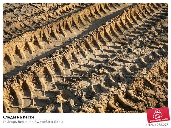 Купить «Следы на песке», фото № 268273, снято 25 апреля 2008 г. (c) Игорь Веснинов / Фотобанк Лори
