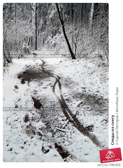 Следы на снегу, фото № 149433, снято 14 октября 2007 г. (c) Сергей Пестерев / Фотобанк Лори