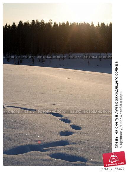 Купить «Следы на снегу в лучах заходящего солнца», фото № 186877, снято 21 ноября 2017 г. (c) Крупнов Денис / Фотобанк Лори